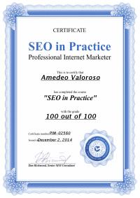 Amedeo Valoroso SEO Certificate, SEO techniques, SEO guide, Search Engine Optimization techniques, Search Engine Optimization guide