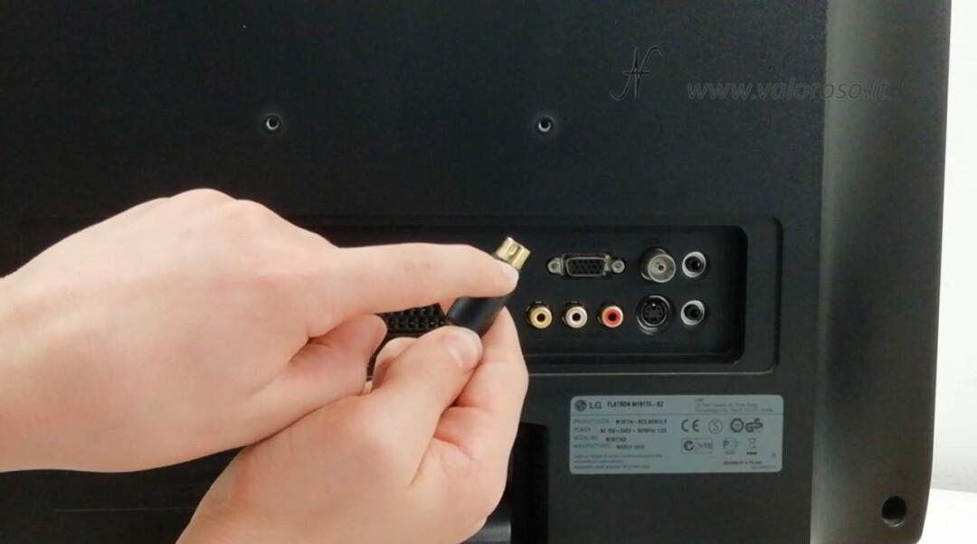 Cavo S-Video per migliorare la qualità delle immagini del Commodore. Collegare il connettore SVideo S-Video miniDIN 4 poli alla TV LCD televisore