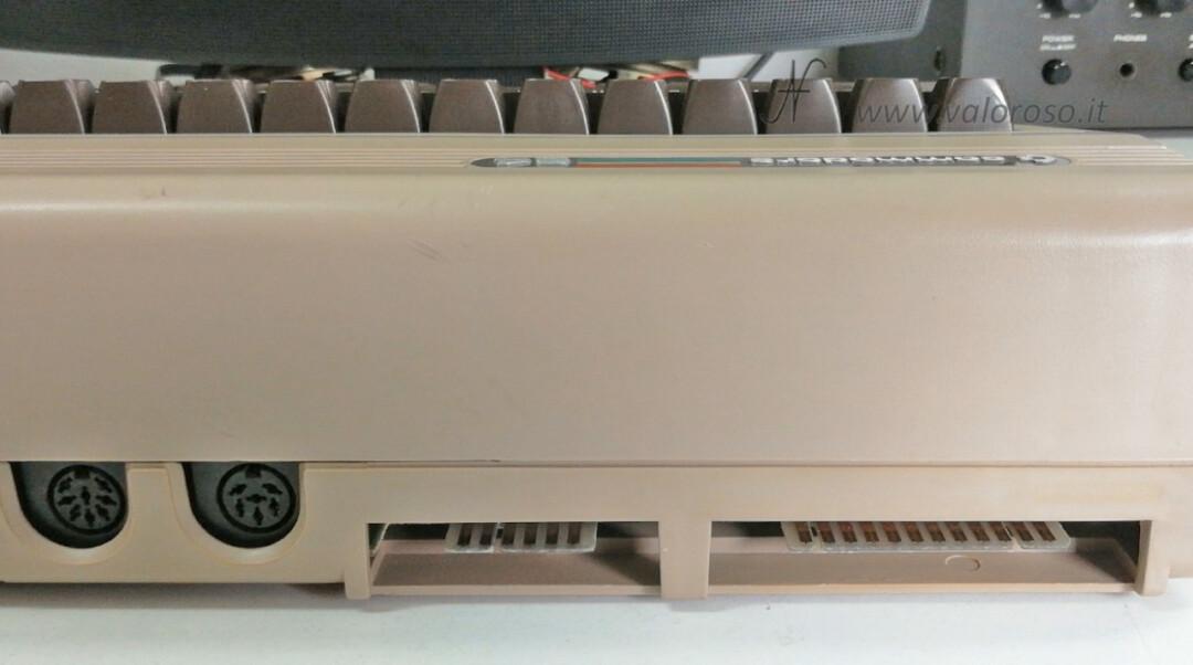 Come riaccendere il Commodore 64 connettore DIN IEC seriale bus audio video AV datassette cassette user port