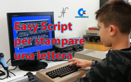 Easy Script, Commodore MPS 803, Commodore 64, stampare una lettera negli anni 80, stampare con il Commodore, video scrittura