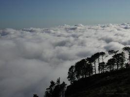 (2002) Invasi dalle nuvole