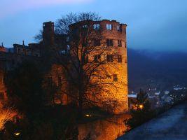 (2005) Castello di Heidelberg