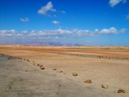 (2005) Strada nel deserto