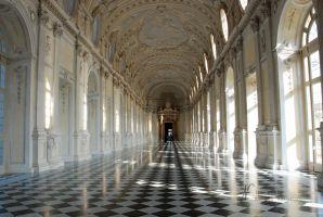 (2012) La Venaria Reale, pavimento
