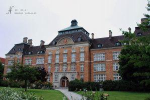(2013) Sankt Petri skola